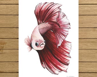 Red Betta Fish, Tropical Fish, Watercolor Illustration, Giclée Print, A3 or A4 size