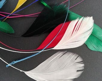 10 colored feathers