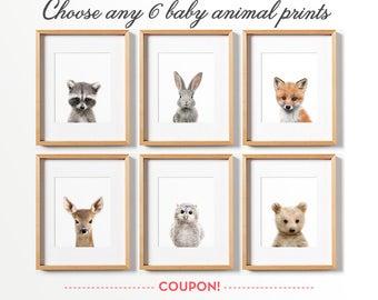 6 baby animal prints, Use coupon MOREPRINTS for 40% off, Nursery wall decor, Woodland animals, Nursery art, Raccoon print, Owl print, Fox