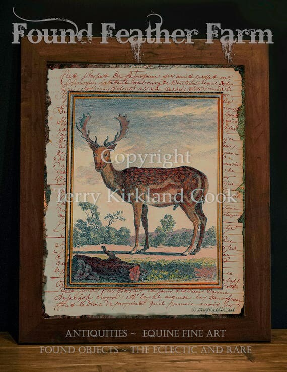 """The English Fallow ~ Original Vintage Art Collage 20"""" x 24"""" Framed Giclee Print"""