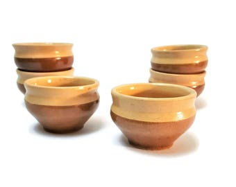 Soup bowls in enamelled terracotta, French dinner, onion soup, vintage