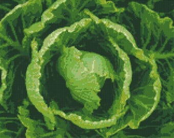 Cabbage Counted Cross Stitch Pattern / Chart, Instant Digital Download, Kitchen Decor  (AP083)