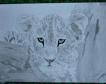 """Cub"" wildlife animal drawing ink of China and signed ink wash G.Vanspey"
