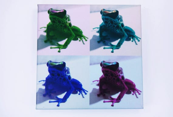 Sale Image Popart Frogs colorful-acrylic art print on canvas 20 x 20 cm print-wall decoration art green blue pink Frog picture-B-ware