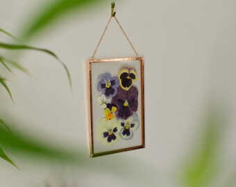 """Real pressed flower wall hanging   pansies   4x6"""" glass with copper edging   botanical home decor"""