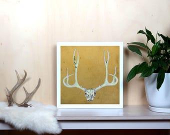 Deer Skull on Gold