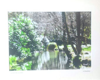 "Ranworth Print, Norfolk Broads, Nature Photography, Signed Limited Edition, A4 Landscape Color Photograph, 35.5 cm x 28 cm 14""x 11"" Mount."