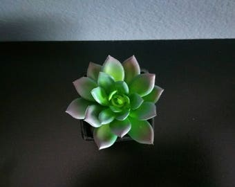 Modern Fake Mini-Succulent