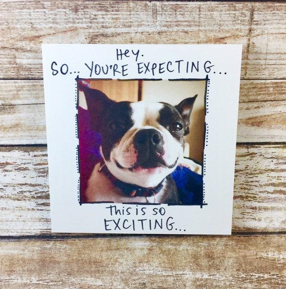 New baby card, congrats, expecting card, congrats on new baby, funny dog card, blank card, funny card, dog card, baby card, boston terrier