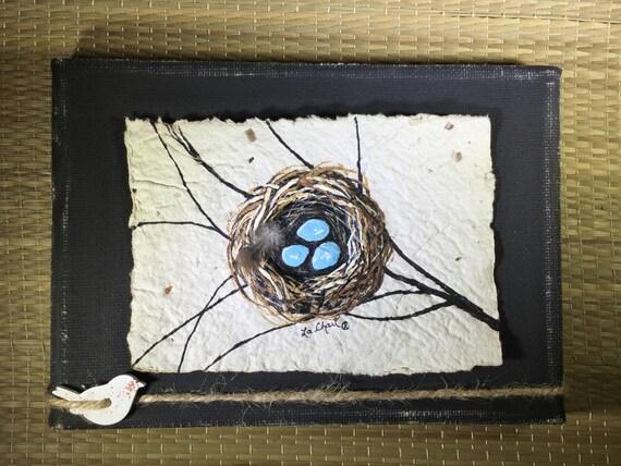 Little bird nest