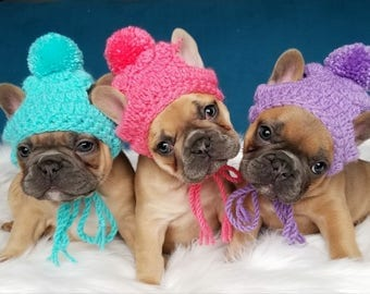 Handmade Crochet Puppy Dog crocheting beanie toque pompom beanie Colors French Bulldog Puppy Pug Bulldog Boston terrier Fashion Accessories
