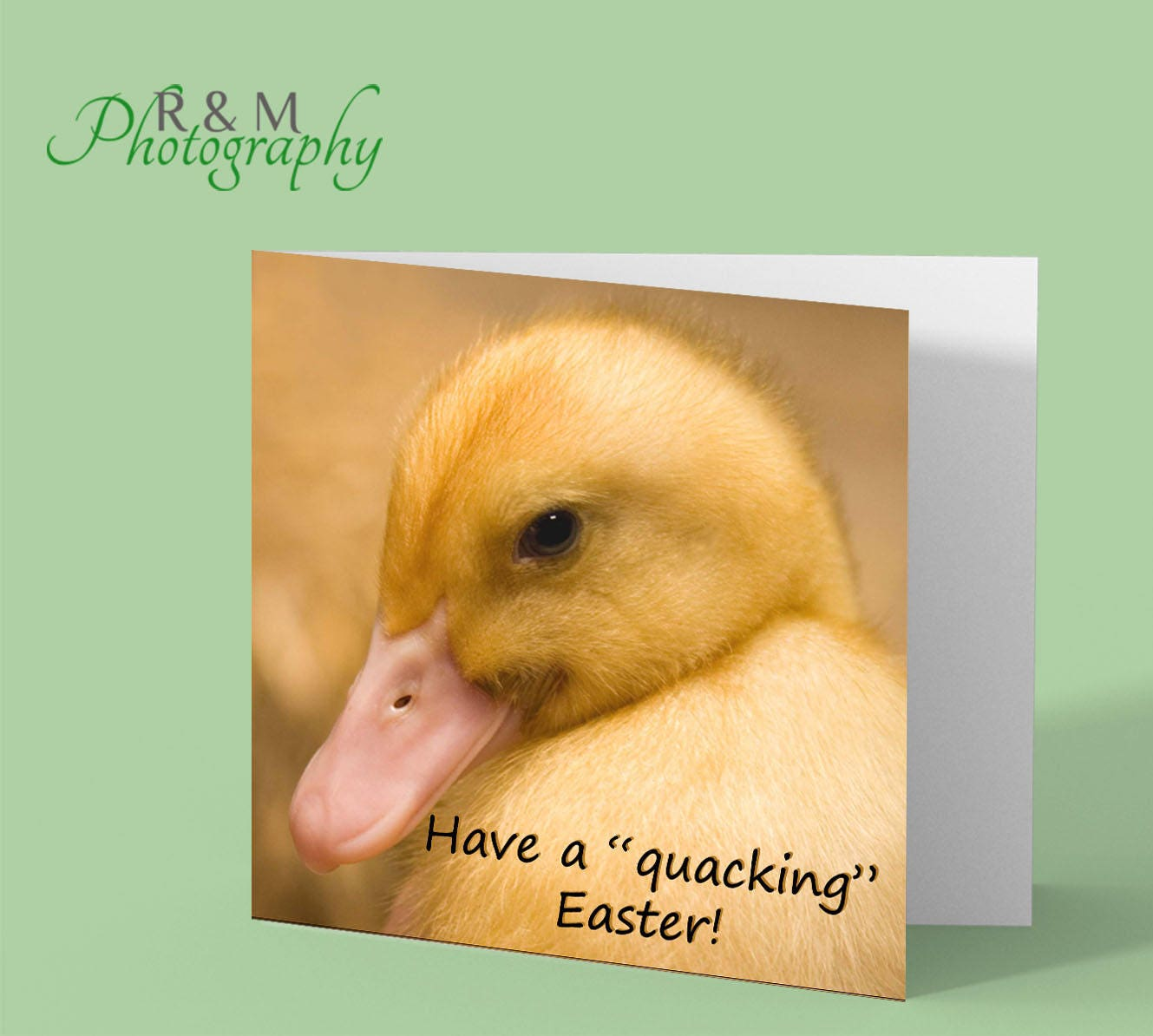 Happy easter card duckling chick funny easter card zoom kristyandbryce Gallery