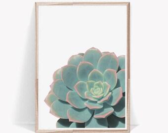 Succulent Print,Prints,Botanical Print,Tropical Print,Wall Art,Wall Art Prints,Pastel,Cactus Print,Succulent,Succulents,Botanical,Wall Print