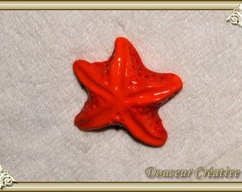 Magnet orange Starfish 304002