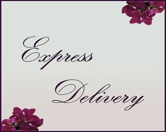 Additional payment for express delivery to the USA