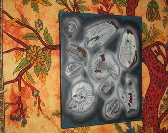 Ammonites and Trilobites Canvas