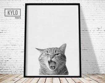 Cat Print, Animal Print, Nursery Decor, Cat Photo, Pet print, Animal Photography, Printable Art, Kids print, Nursery Animals, Kitten print