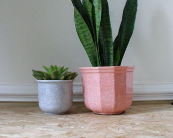 Small mottled grey ceramic plant pot, succulents, catci
