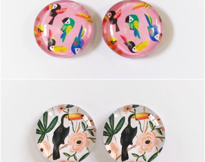 The 'Toucan' Glass Earring Studs