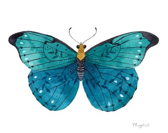 Original watercolor illustration, Butterfly