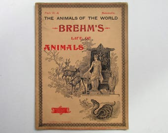 Antique 1896 Brehm's Life of Animals, Part 18-A, Illustrated, 1890's Booklet, Marquis & Company, The Fin-Footed Animals, Seals, March 1896