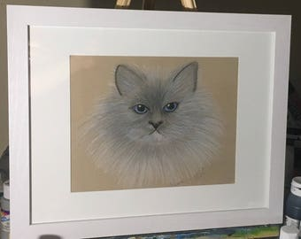 Drawing / Sketch of Himalayan Cat - displayed in wooden white frame