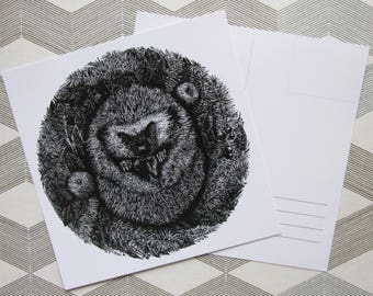 """postcard """"Sleepy hedgehog"""""""