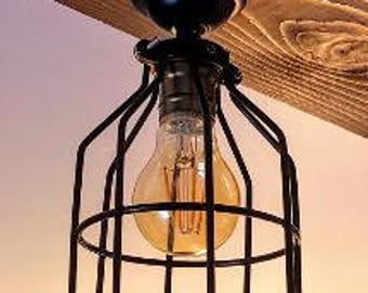 Light Fixture and Cage