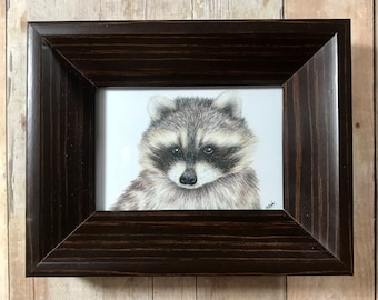 Raccoon colored pencil drawing in brown wood frame