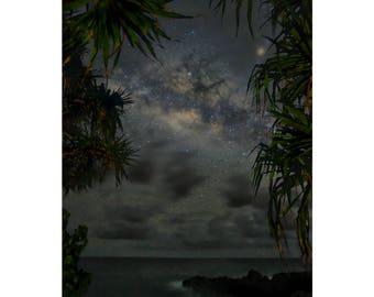 Framed in Hala - Hawaii Island photography by Harry Durgin