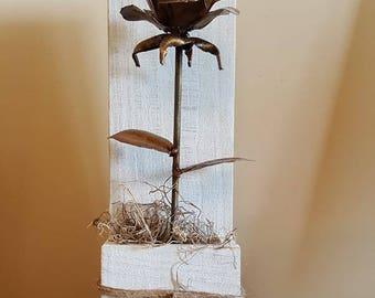 Rose and distressed display box