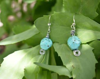 Robins egg earrings
