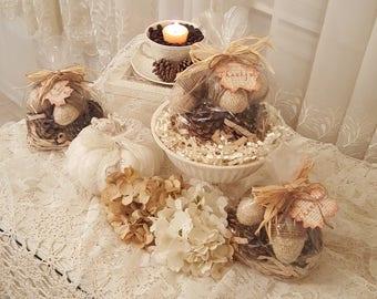 Vintage Acorns and Pinecones Gift Set