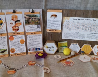 Honey Bee Unit