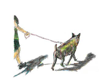Dog walking man