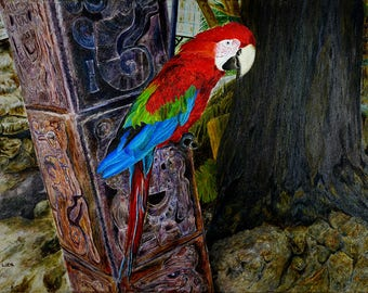 Parrot Macaw Original Painting Oil Color High Quality Giclée Print , home decor , office nursery animal art , gift , PRINT wall decoration