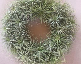 Air Plant Candle Ring/Wreath