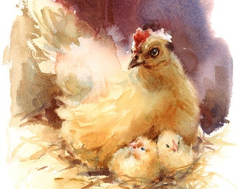 Farm Chicken Watercolour Painting Q78