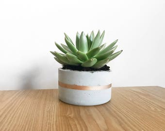 Concrete Circular Plant Pot