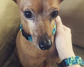Matching Friendship Bracelet/Dog Collar (Up to 10 inches for collar size)