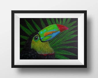 Toucan Original drawing Traditional drawing Bird illustration Exotic bird Colored pencils art Design Tropical Bright colors Amazon jungles