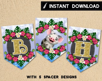 Instant Download - Moana Birthday Party Banner PennantBaby Moana Maui Pua Heihei PinkHibiscus Tropical Flowers Blue Bokeh DIY - Digital File