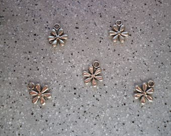 5 charms flowers in silver 10 mm approx