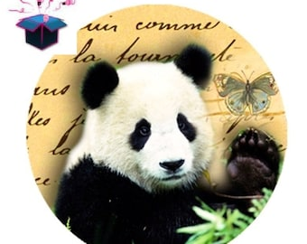 1 cabochon clear 20mm panda theme