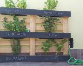 Vertical garden made with Pallets