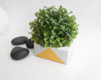 Pot for mini plants in concrete gray and gold color