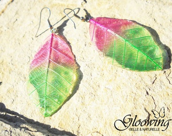 Pierced earrings, wings of insects and plant leaves.