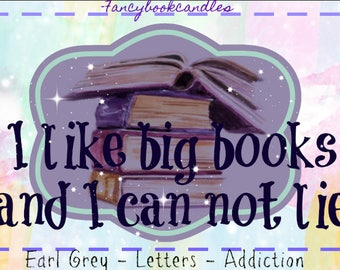 I like big books and I can not lie-book quote-Soy Candle-handmade