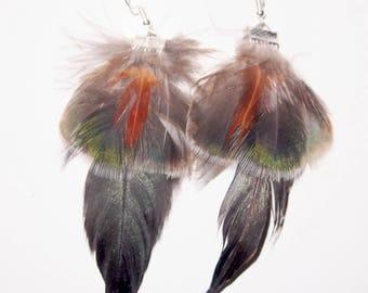 Earrings feathers Peacock fan