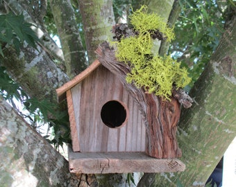 Rustic Bird Cabin